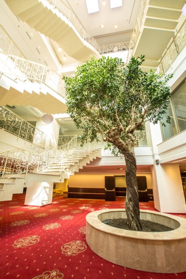 Sali Conferinta – Hotel International Palace – Iasi – 10