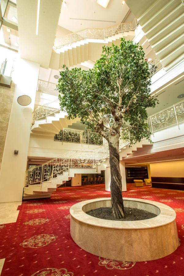 Sali Conferinta – Hotel International Palace – Iasi – 9