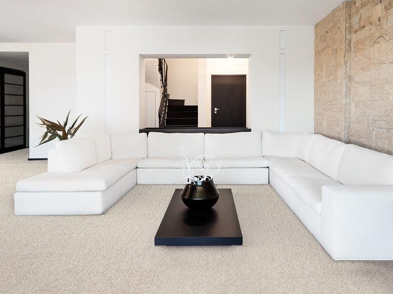 Mocheta Casa- Mocheta Colectia Regal | Carpet&More